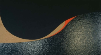 Caterina Ciuffetelli - Hump of sea - 2003 - acrilico e vinilica su cellotex - cm 60x120