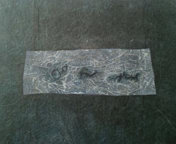 Pre-historic 7 - 2017 - frottage su carta su mdf - cm 50x60