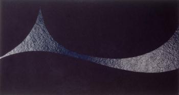 Caterina Ciuffetelli - Tail of the sea - 2003 - acrilico e vinilica su cellotex - cm 60x120